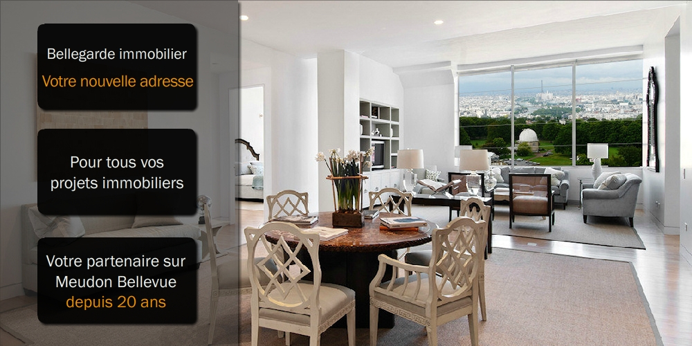 agence immobiliere meudon